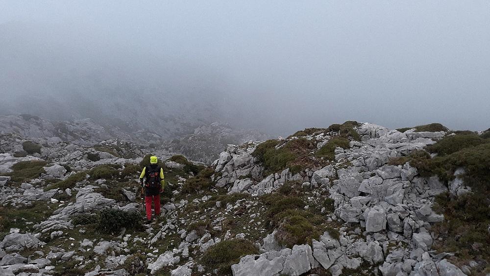 Hoos del Carbanal, Picos de Europa