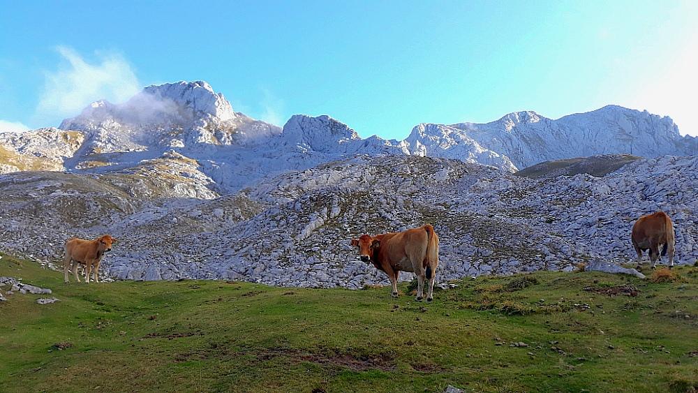 Rutas y senderismo en Picos de Europa