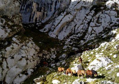 Rutas de montaña en Cantabria